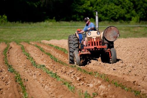 farmer invests in online platform in Nigeria