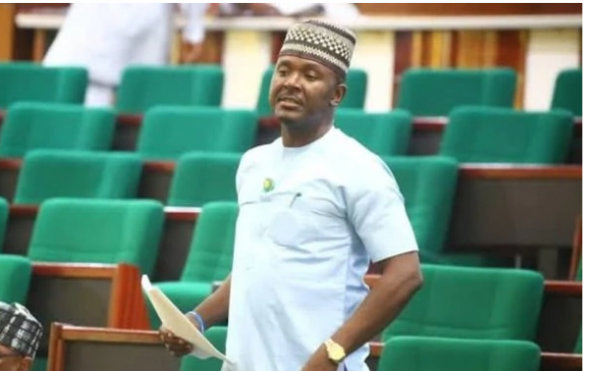 Akin Alabi Politician on the floor of house of Rep
